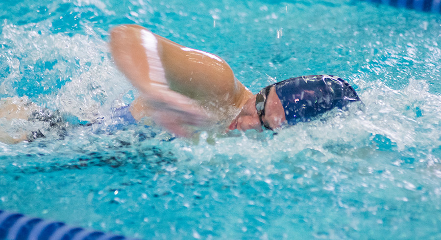 Women S Swimming Amp Diving Hillsdale College Athletics