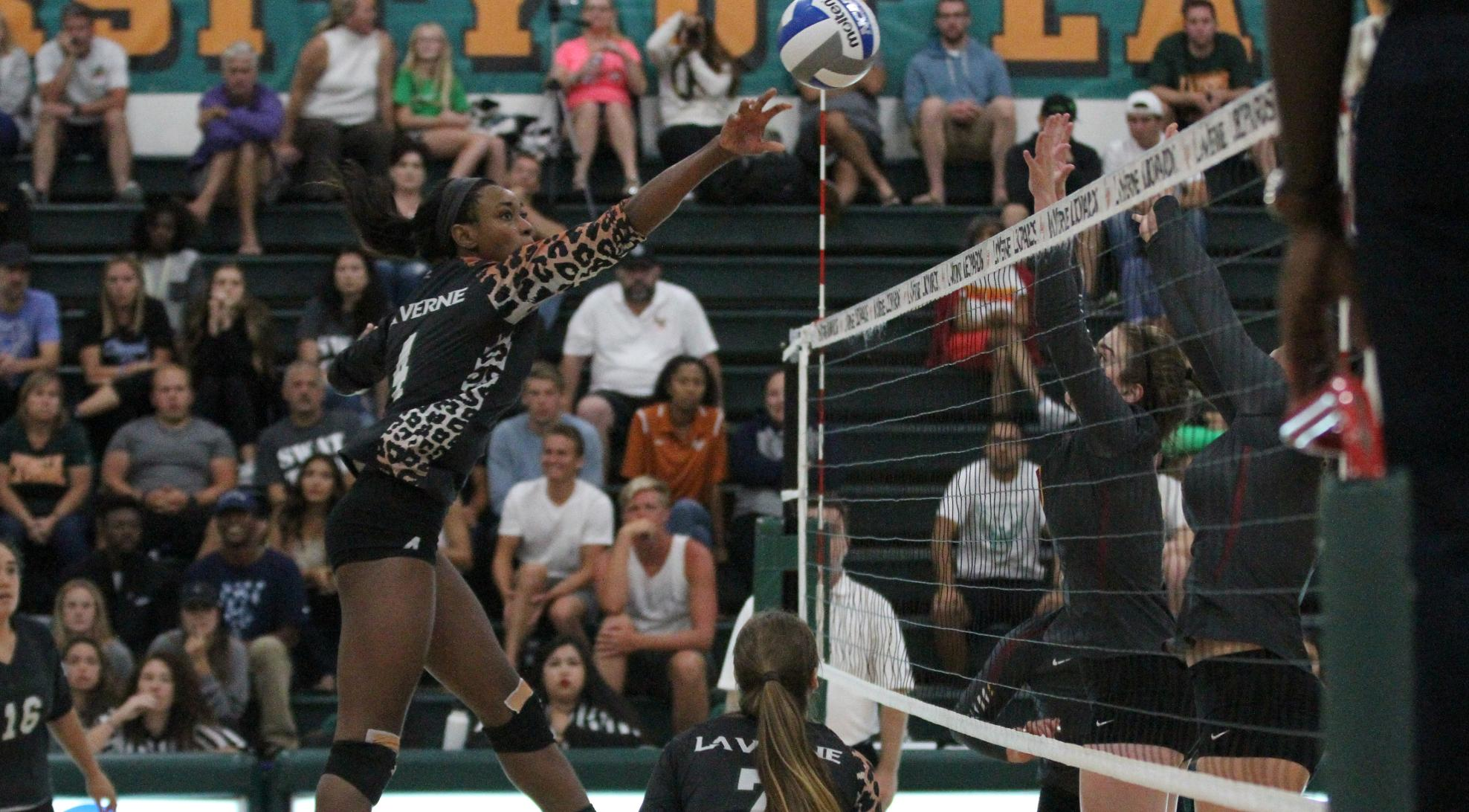 Volleyball bounces back, sweeps Oxy