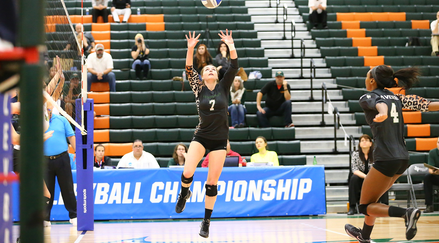 No. 19 Volleyball drops to No. 7 Southwestern in NCAA Championship
