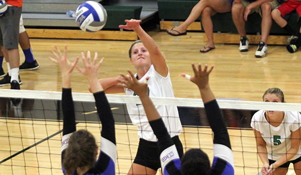 Volleyball Splits on Opening Day of the 2014 Wildcat Regional Invitational