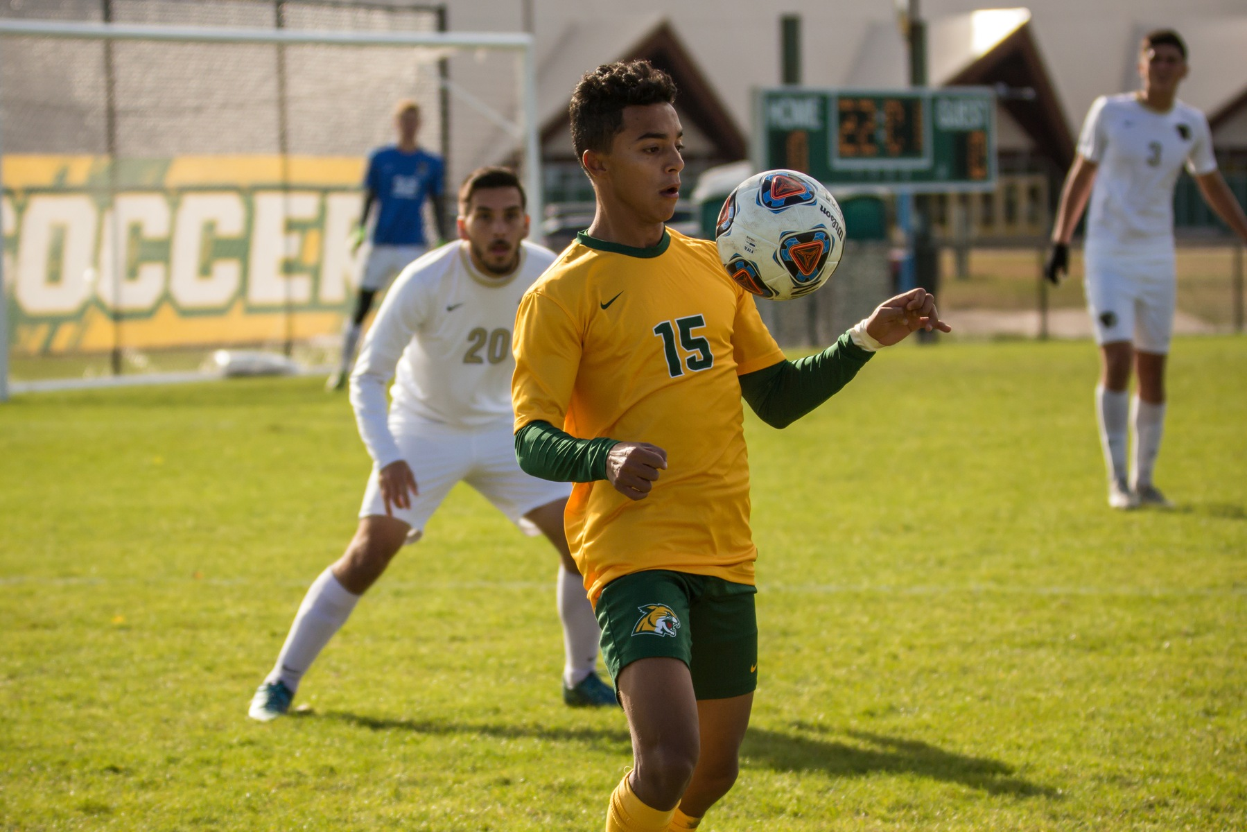 Wildcats End GLIAC Play with Loss at Tiffin