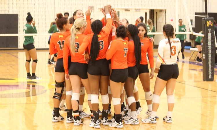 Lady Suns Gear up For Dig Pink Night Against North Lake