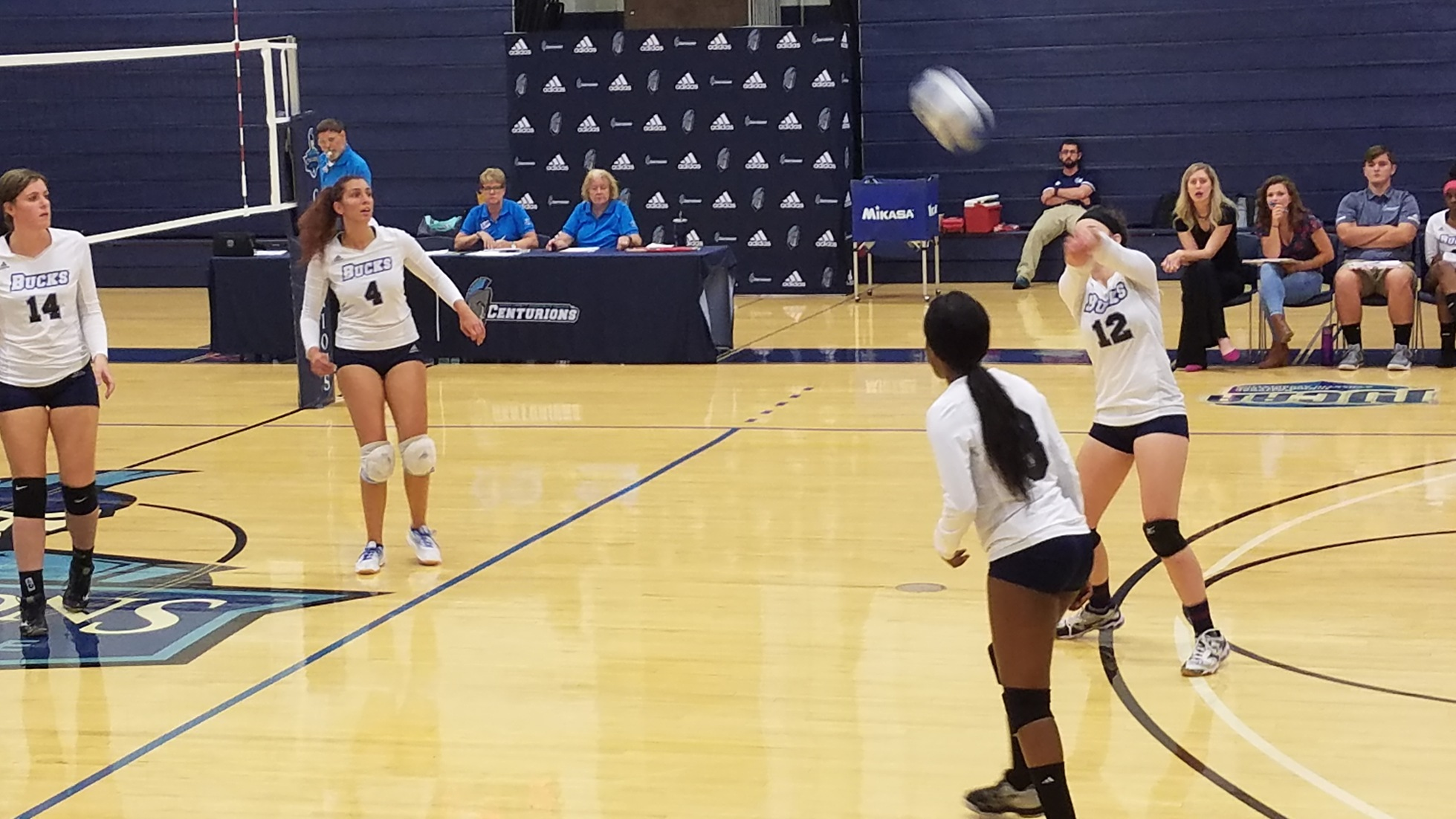 Women's Volleyball: Top Trojans