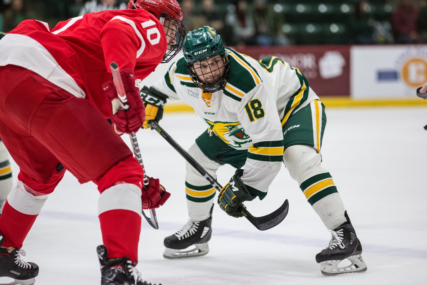 Wildcat Offense Stays Hot, NMU Extends Win Streak