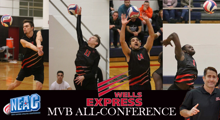 Five from Wells College Named Men's Volleyball All-Conference