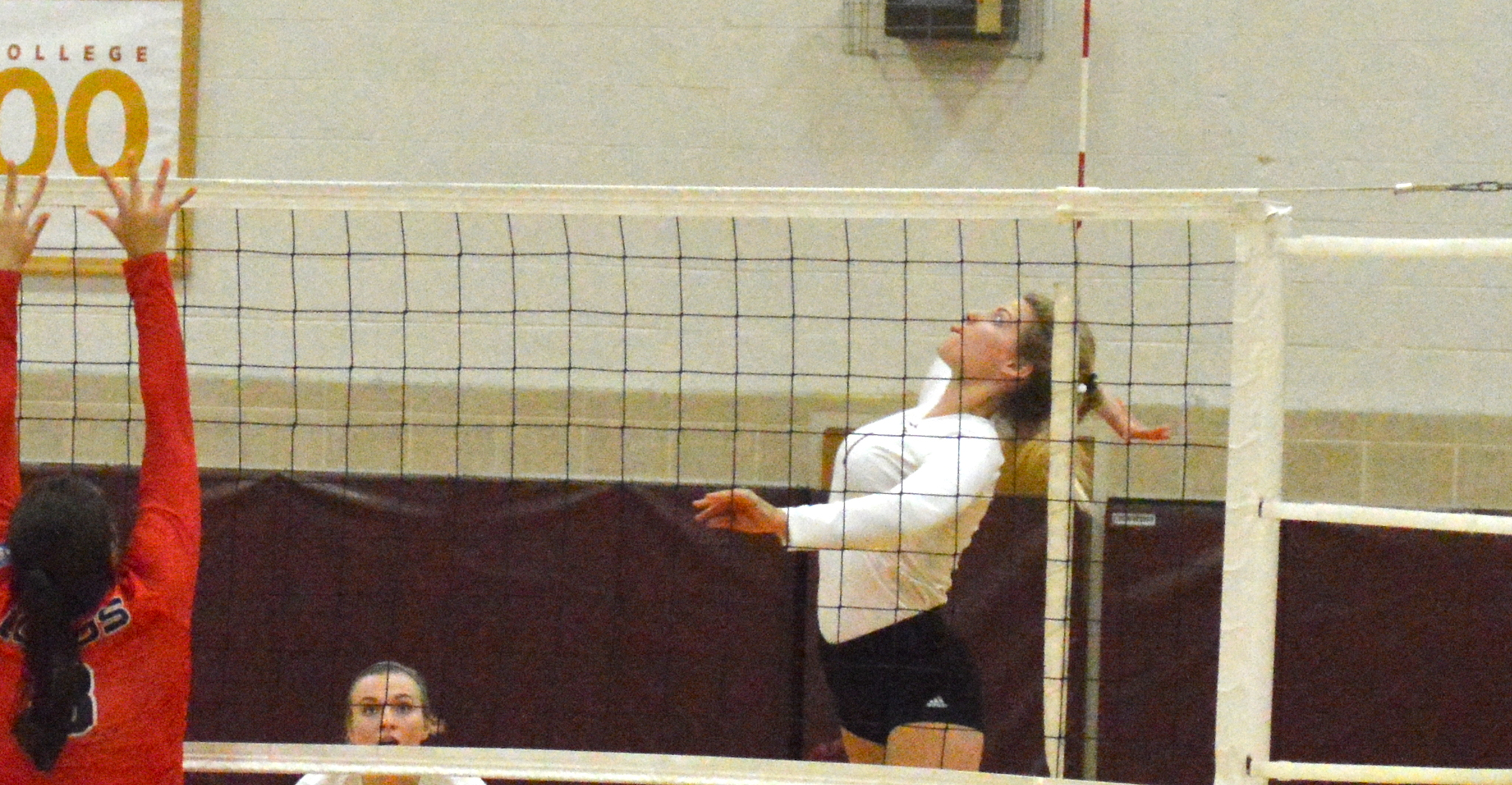 'Roo Volleyball Falls to Texas Lutheran