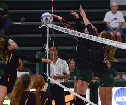 Volleyball Takes No. 18 CMS To Brink, Falls in Five