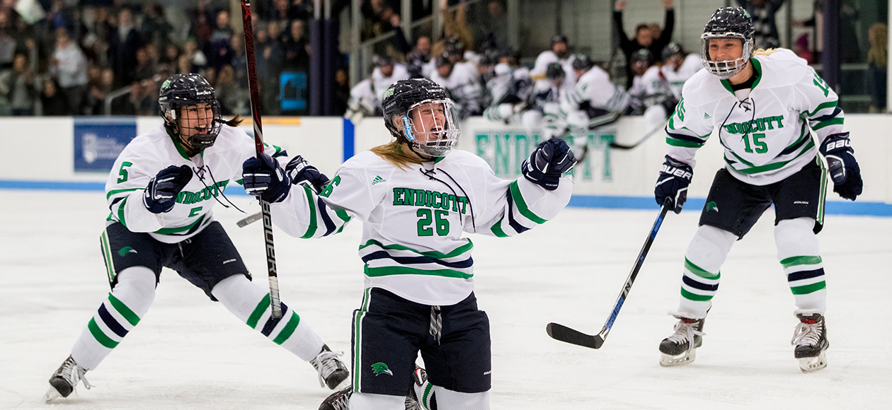 Members of the Endicott women's ice hockey team celebrate a goal.