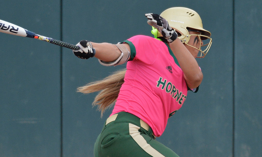 SOFTBALL DROPS SERIES FINALE TO SOUTHERN UTAH, 4-2