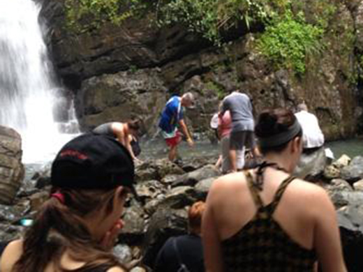 Volleyball Trip to Puerto Rico: Into the Rain Forest (Day 2)