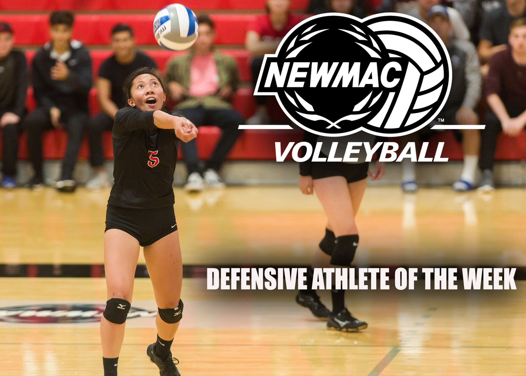 Quiban Picks Up Third NEWMAC Volleyball Defensive Athlete of the Week Honor