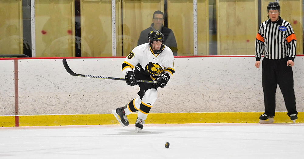 Hockey Battles Back to Overtake Endicott