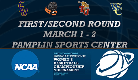 2013 NCAA Division III Women's Basketball Championship Tournament