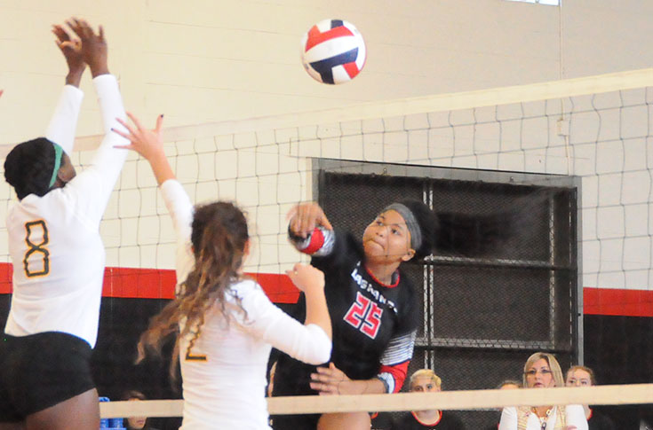 Volleyball: Panthers beat Berea to pick up 20th win of season