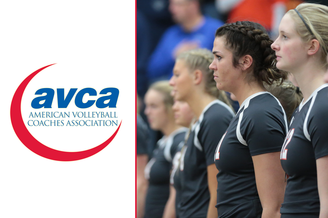 Volleyball Receives AVCA Academic Award