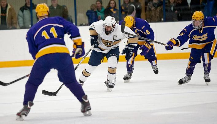 Men's Hockey Suffers Overtime Loss to Pointers