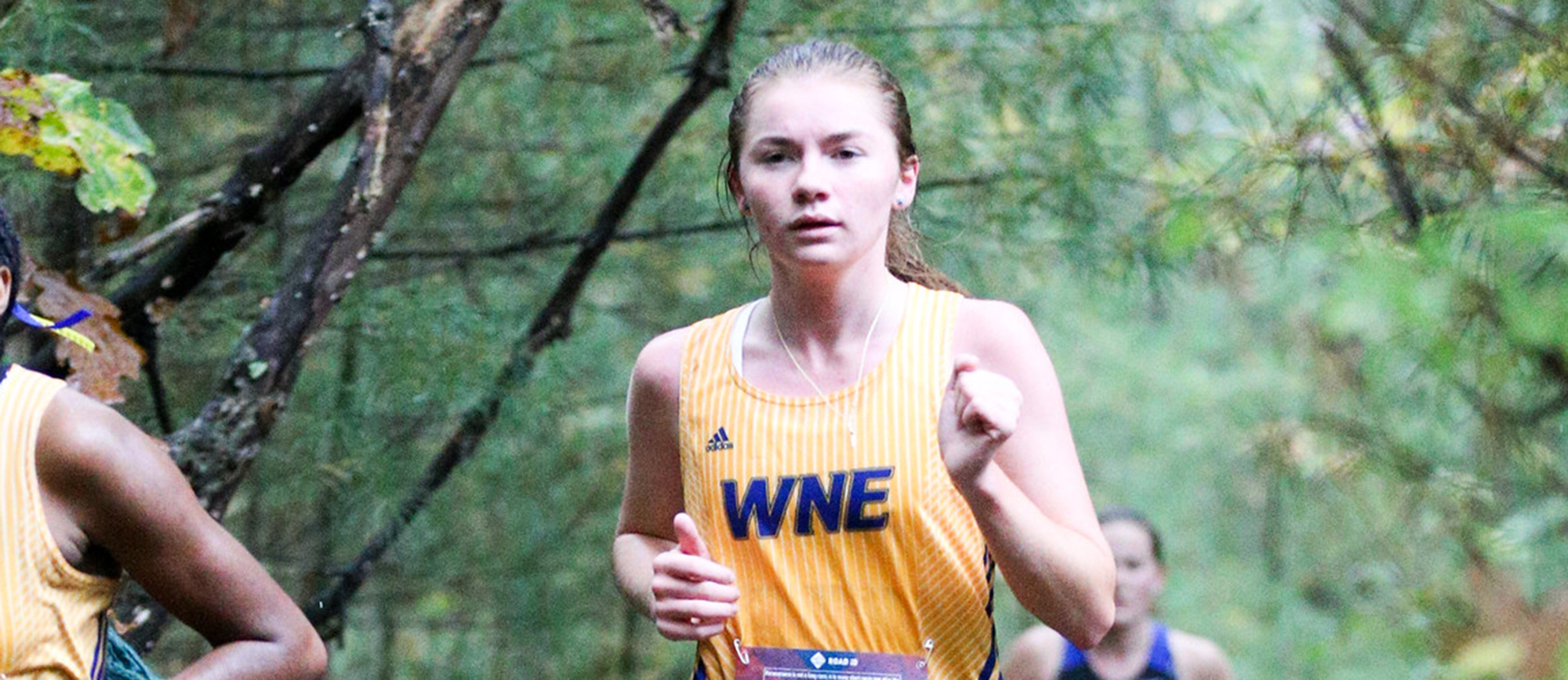 Women's Cross Country Places 10th at Western New England Invitational