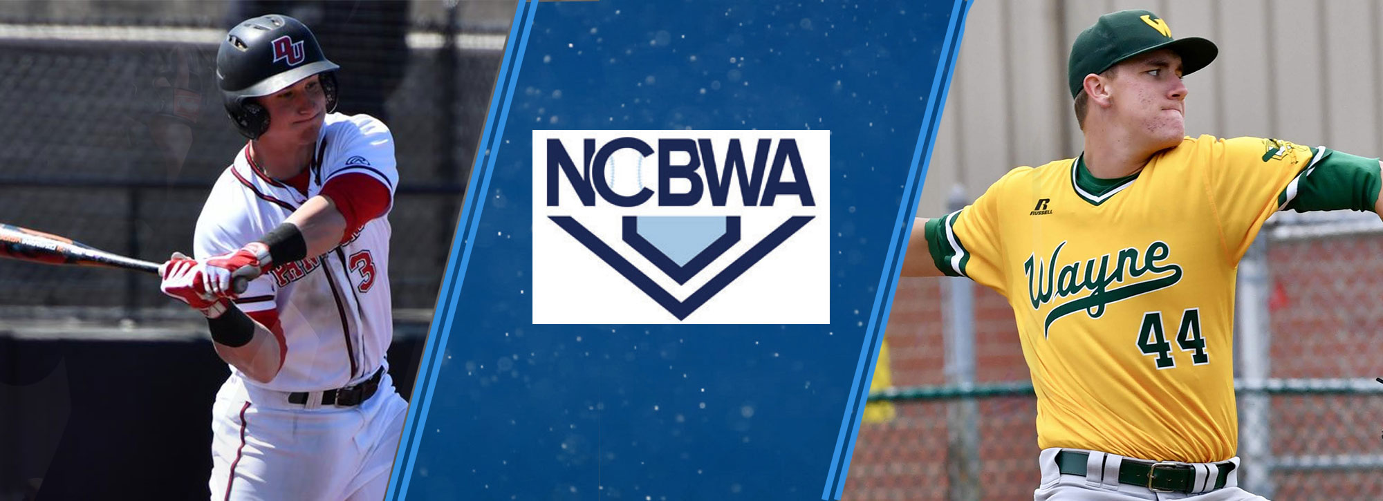 Davenport's Buchberger & Wayne State's Brown Garners NCBWA All-America Honors; Three Named Honorable Mention