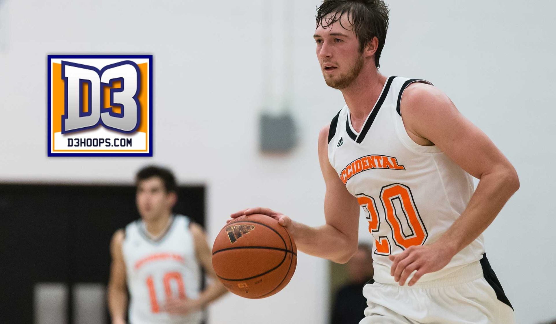 DeWitz Named D3hoops.com All-West Region