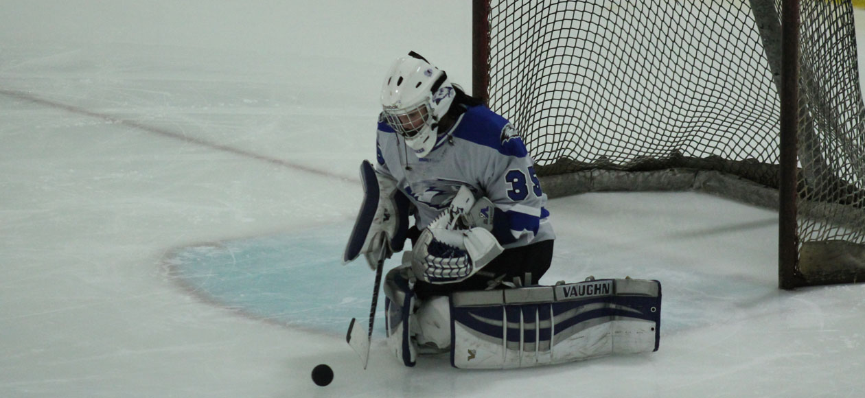 Mustangs Blank Women's Ice Hockey