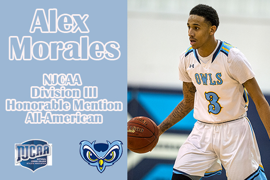 Prince George's Alex Morales Named Men's Basketball NJCAA Division III Honorable Mention All-American