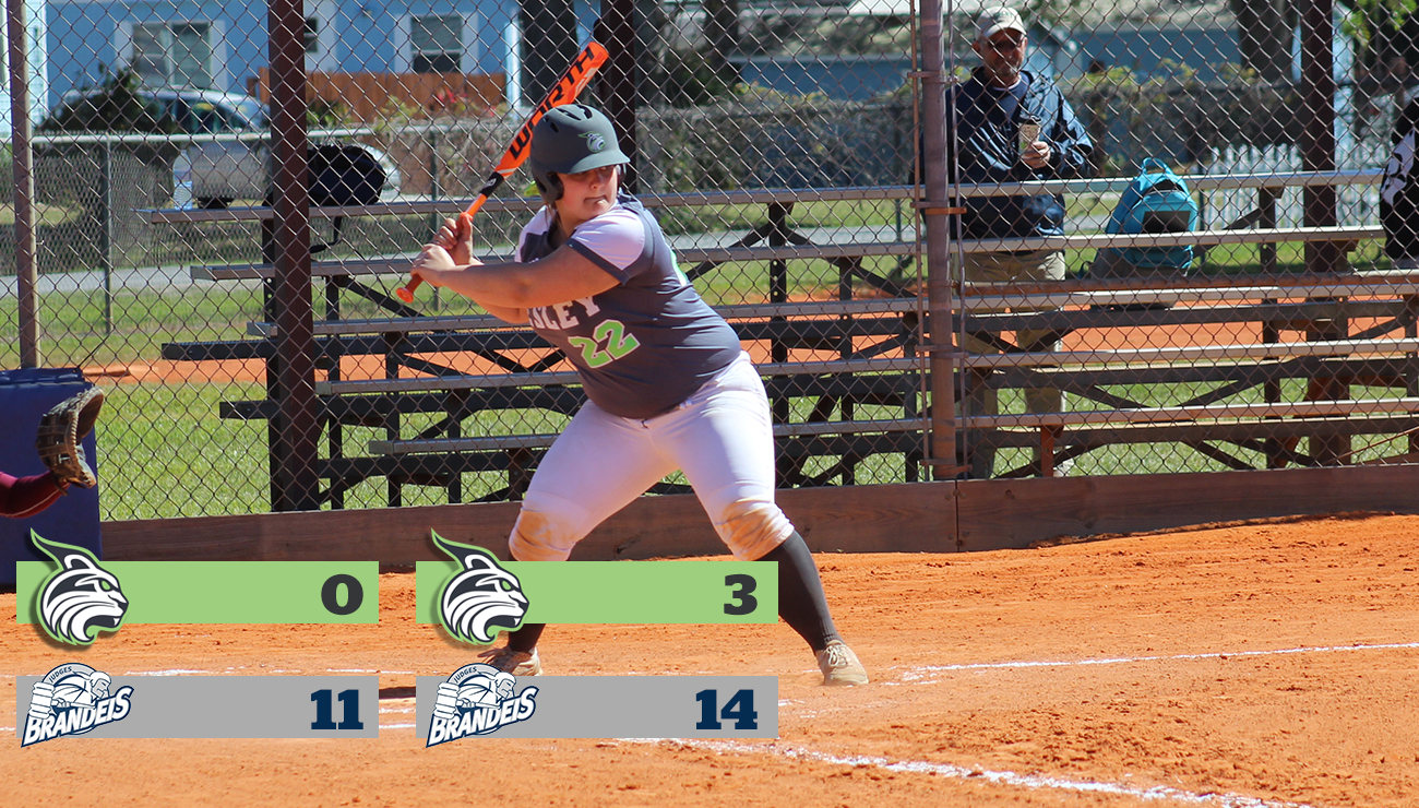 Murphy Launches First Collegiate Homerun; Lynx Fall to Tough Non-Conference Opponent Brandeis University