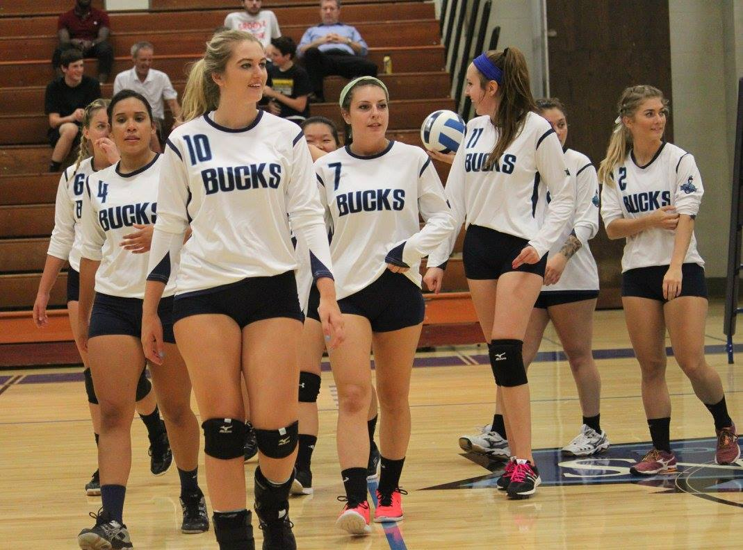 Volleyball Defeats Luzerne