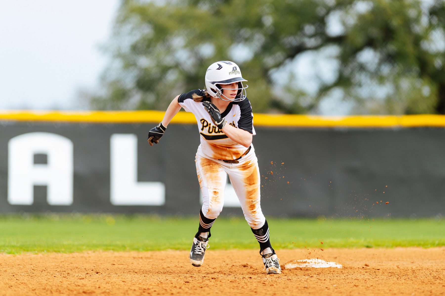 Softball Takes Final Game of Series Against TLU