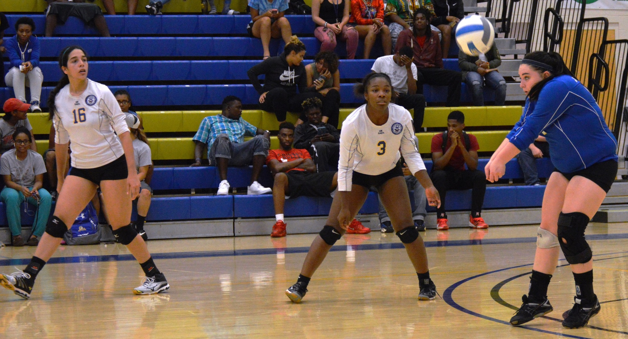 Volleyball Drops Road Match To Bruins