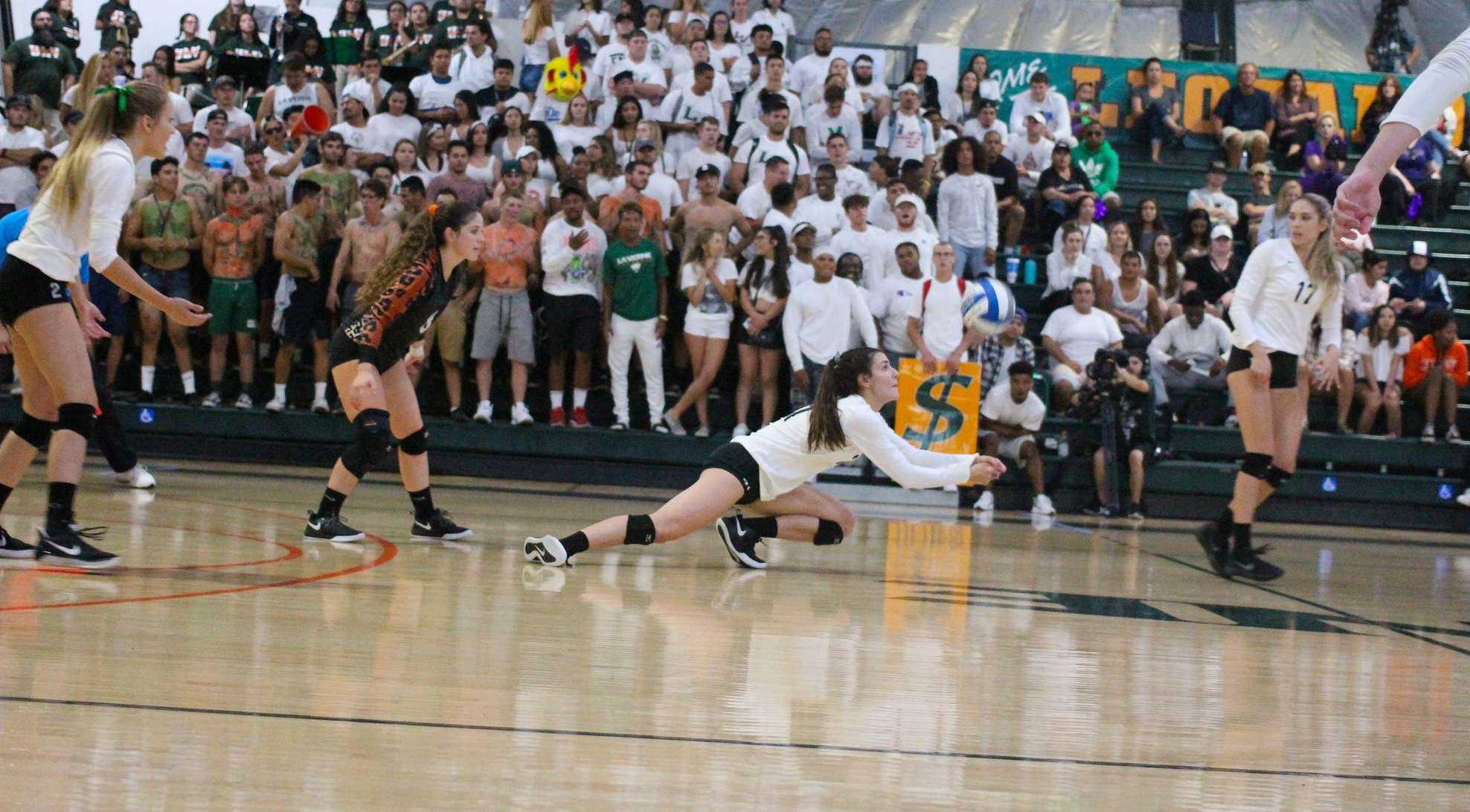 Volleyball rallies but falls in five to Poets