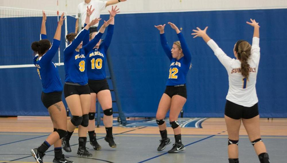 WVB: Wildcats Go 3-1 in First NEAC Crossover of the 2016 Season.