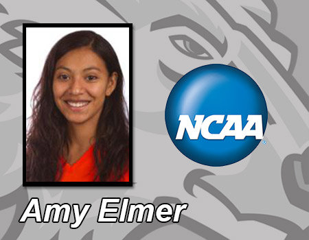 Senior Amy Elmer finishes 6th in the 1-meter at the 2013 NCAA Division III Central Region Diving Championships