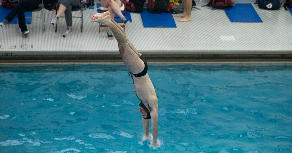 Cardinals Triumph Over Royals at Catholic Diving Invitational