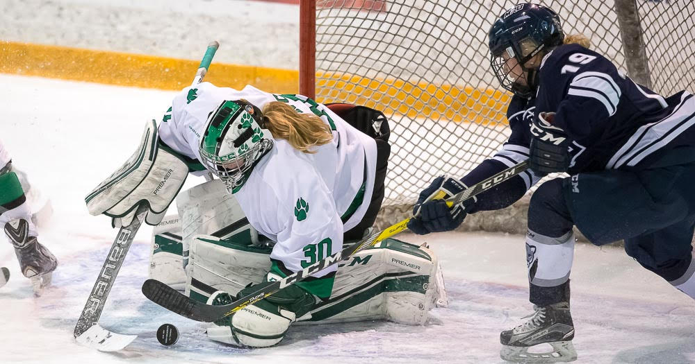 Women's hockey returns the favour; shutout Cougars to even weekend series