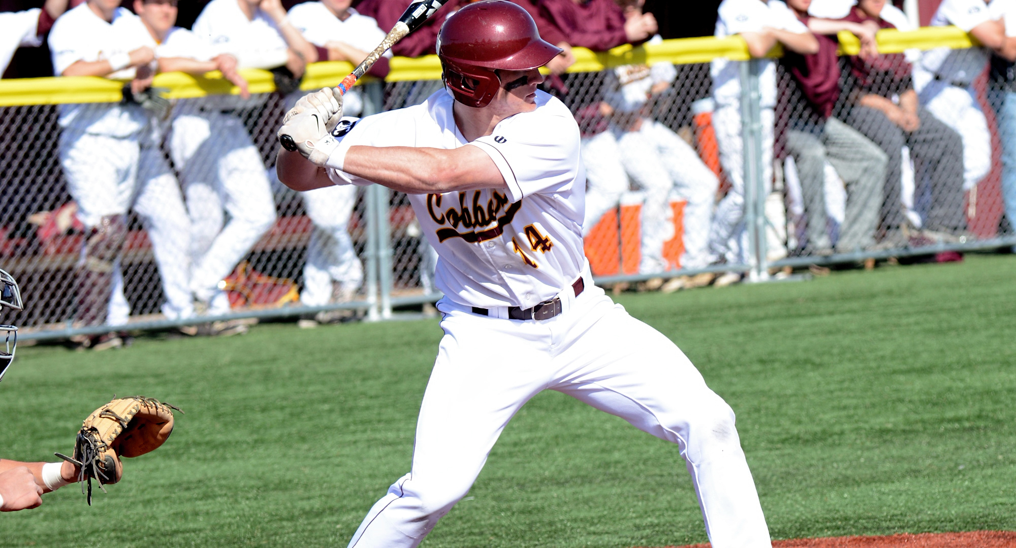 Junior Chad Johnson went 1-for-3 and drove in one of the Cobbers' four runs in the team's game against Augustana (Ill.).