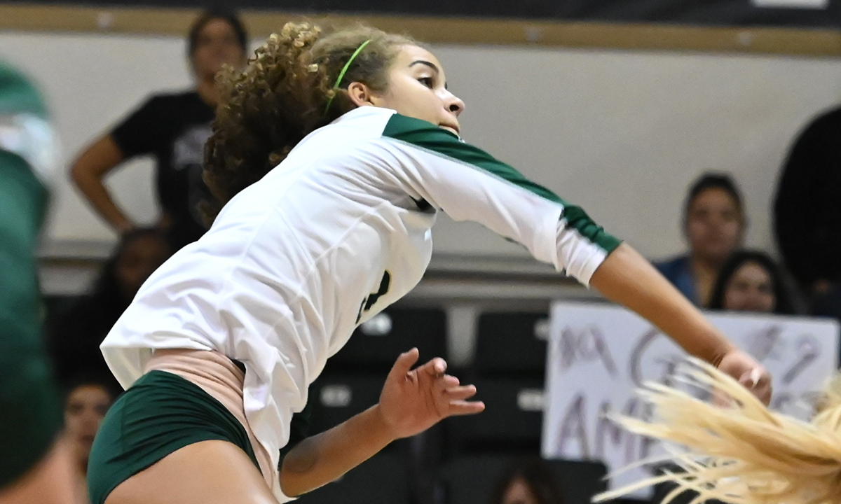 VOLLEYBALL FALLS IN 5-SET NAIL BITER AT MONTANA STATE