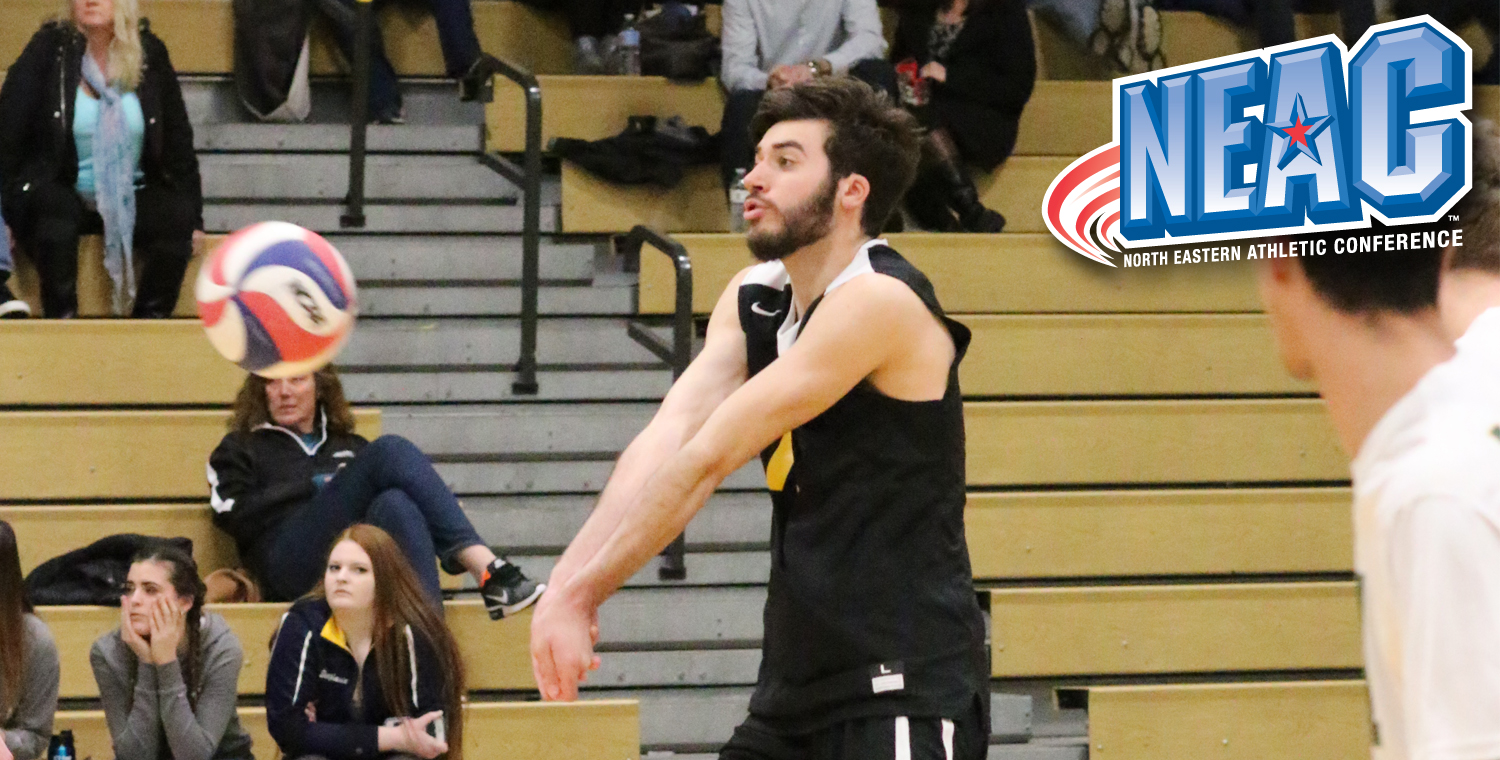 NEAC Names Nick Cantando Defensive Player of the Week