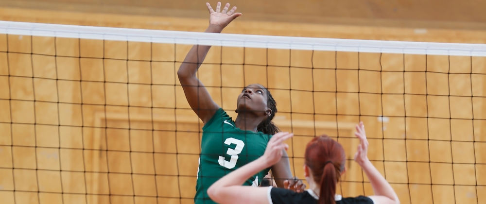 Women's Volleyball Swept at Mount Ida