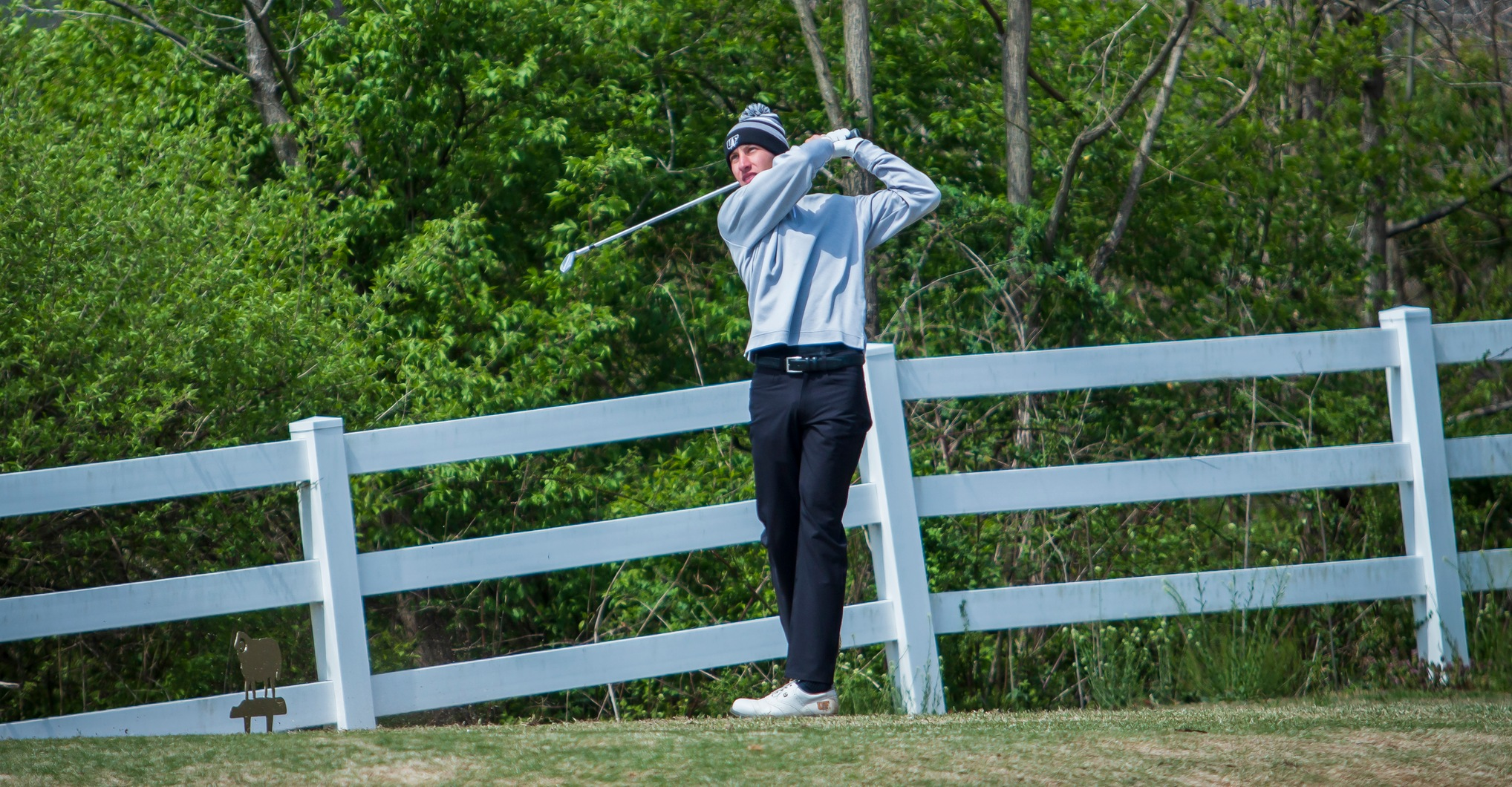 Findlay in Fifth at Greyhound Invitational