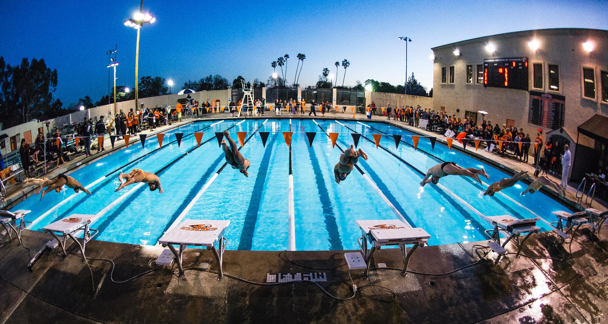 Swim & Dive Announces 2016-17 Schedule