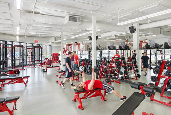 Essay on fitness centres