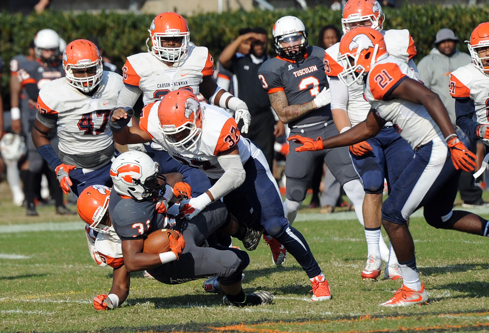 Better Know the Opponent: Week nine: Tusculum