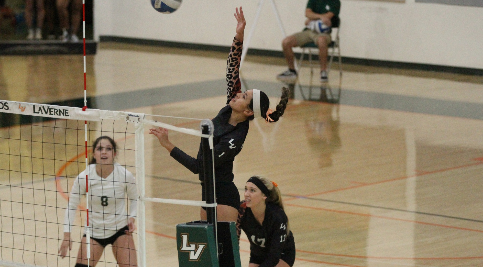 No. 14 Volleyball falls to Austin
