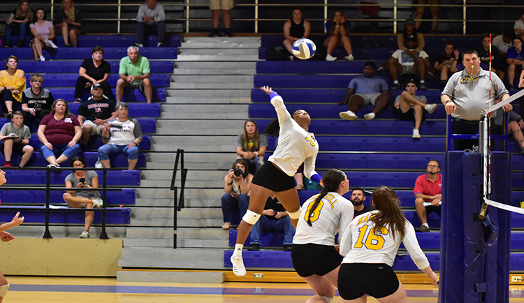 Mars Hill sweeps Coker at home
