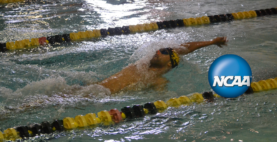 Hussein Continues NCAA Action with School Record in 100 Backstroke