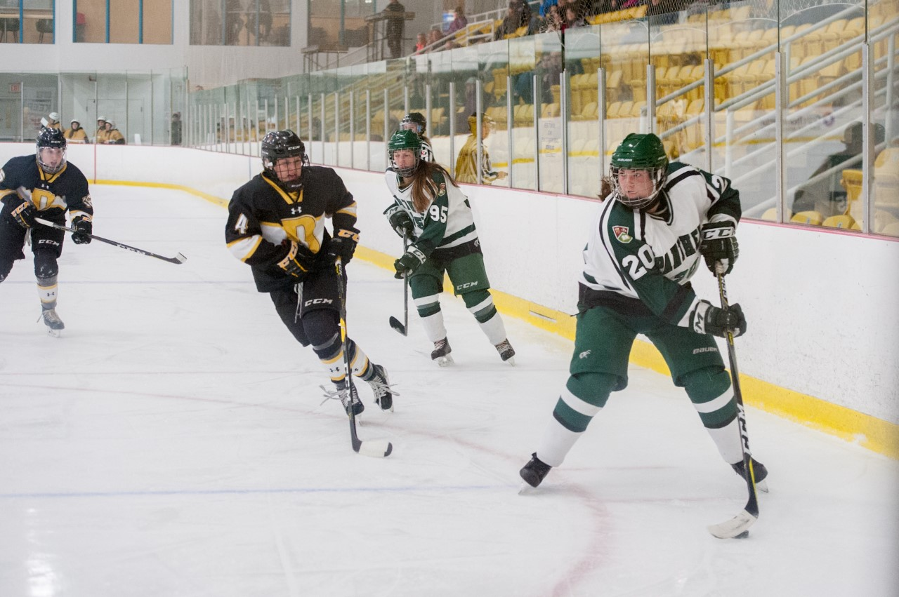 Panthers bounce back with gritty win over Dalhousie