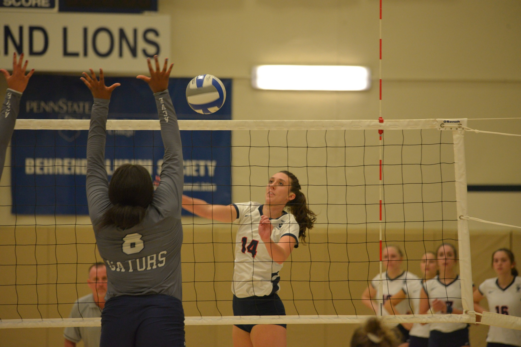 Virginia Wesleyan Gets Past Behrend Volleyball