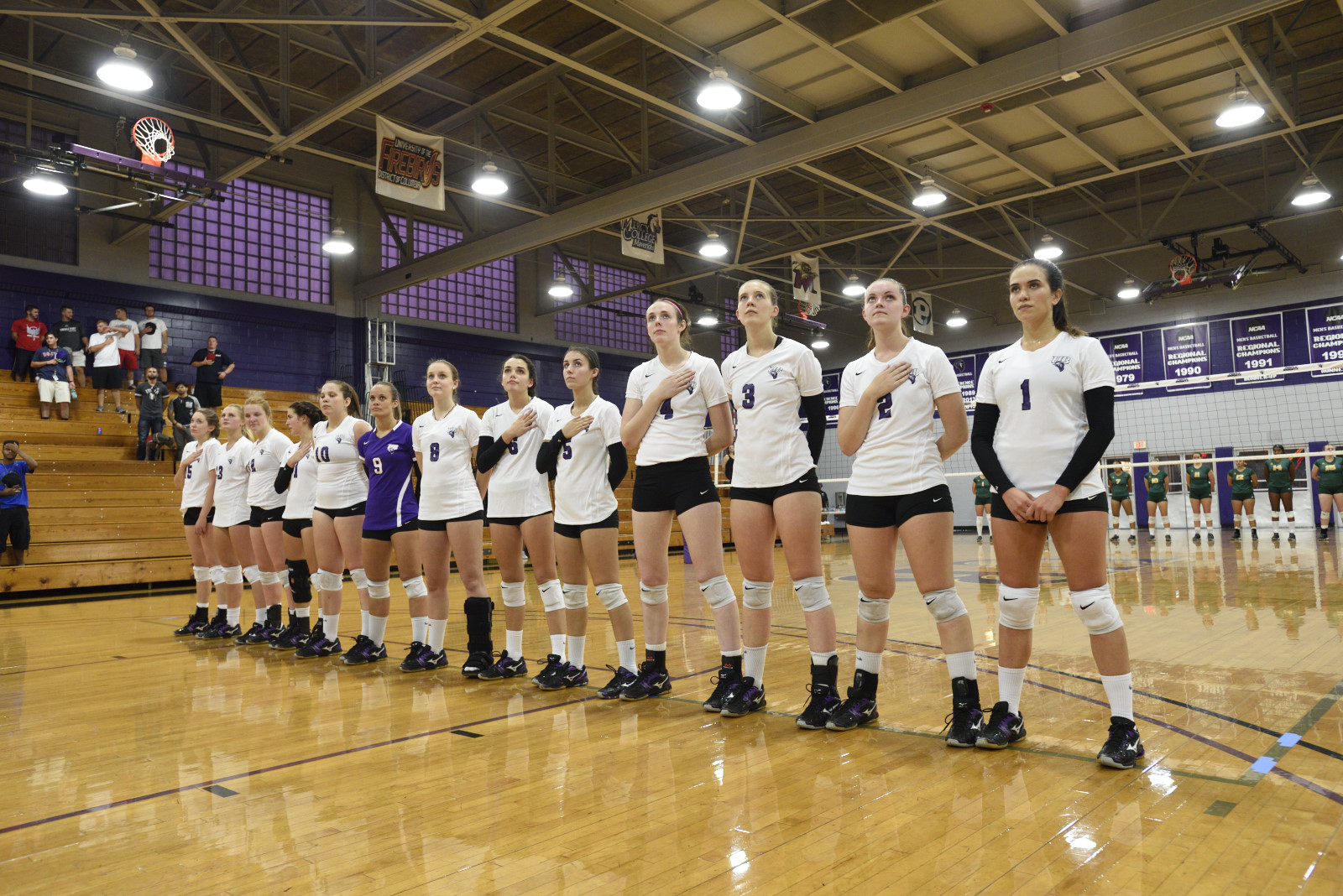 Volleyball Falls In ECC Championship Semifinals To NYIT, 3-1
