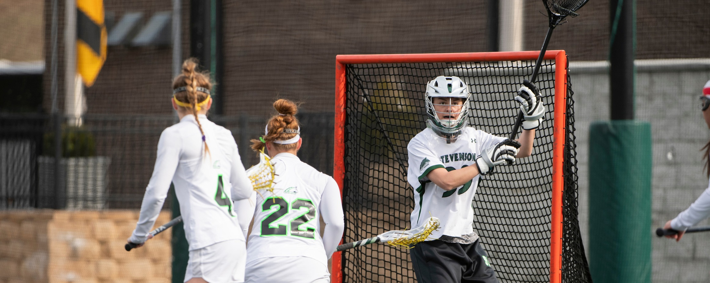 Ferguson's 12 Saves Leads Mustangs to 11-7 Victory Over LVC