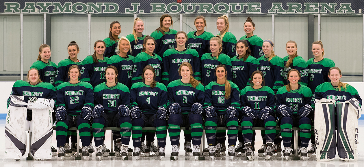 2018-19 Endicott women's ice hockey team.